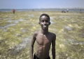 A young boy enjoys a day out at Lido beach in Mogadishu, Somalia, on January 31. The Mogadishu lifeguards, consisting entirely of a volunteer force of fisherman, began patrolling Lido beach in September 2013 after a spate of drownings. Mogadishu's beaches have become a popular destination for the city's residents since al Shabab withdrew the majority of its militants from the city in 2011. AU UN IST PHOTO / Tobin Jones